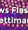 news-flash-3