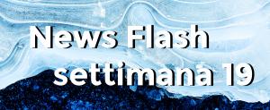 news flash settimana n19