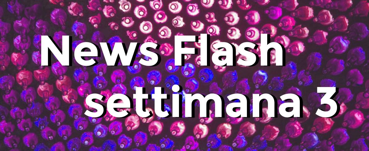 news flash settimana n3