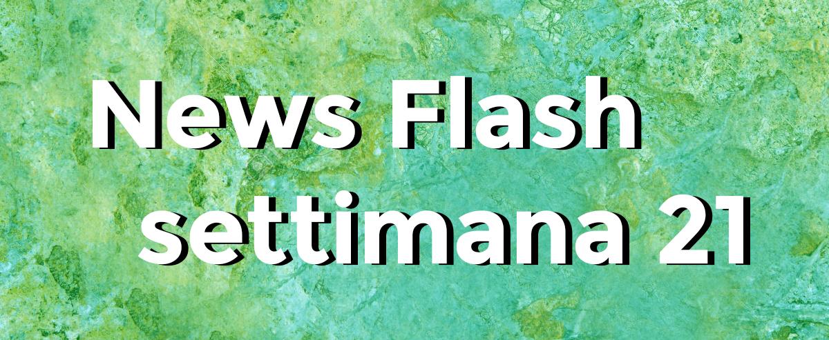 news flash settimana n21