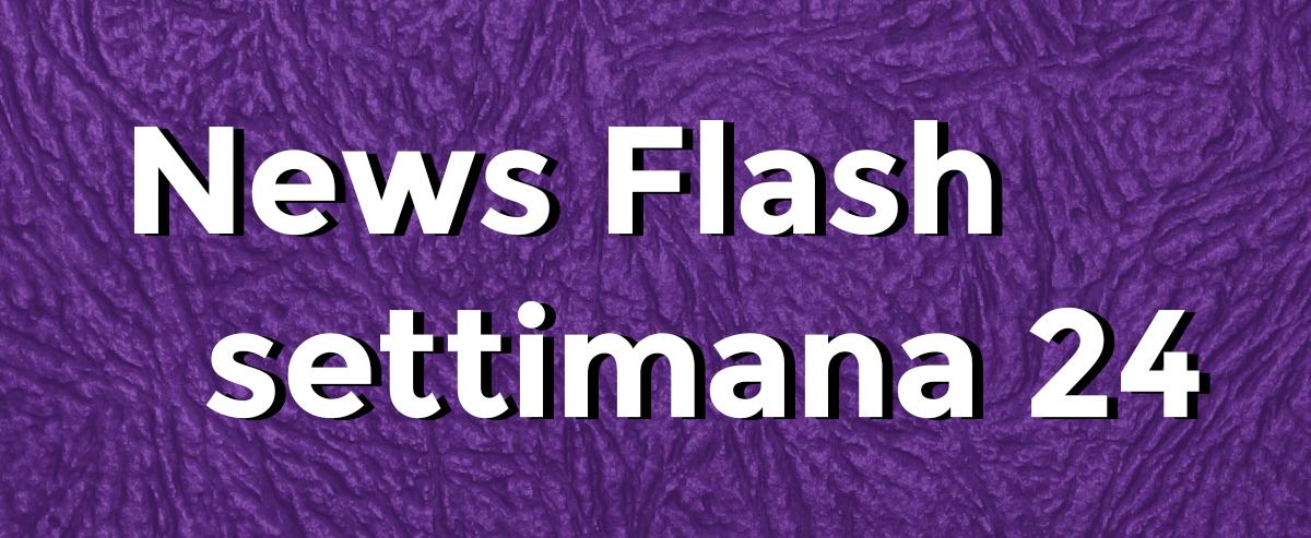 news flash settimana n24