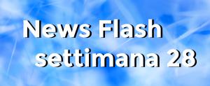 news flash settimana n28